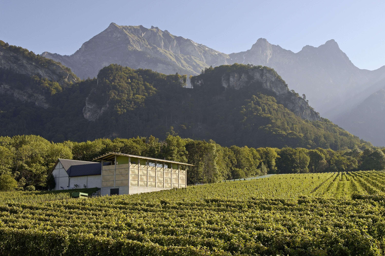 Weingut Gantenbein