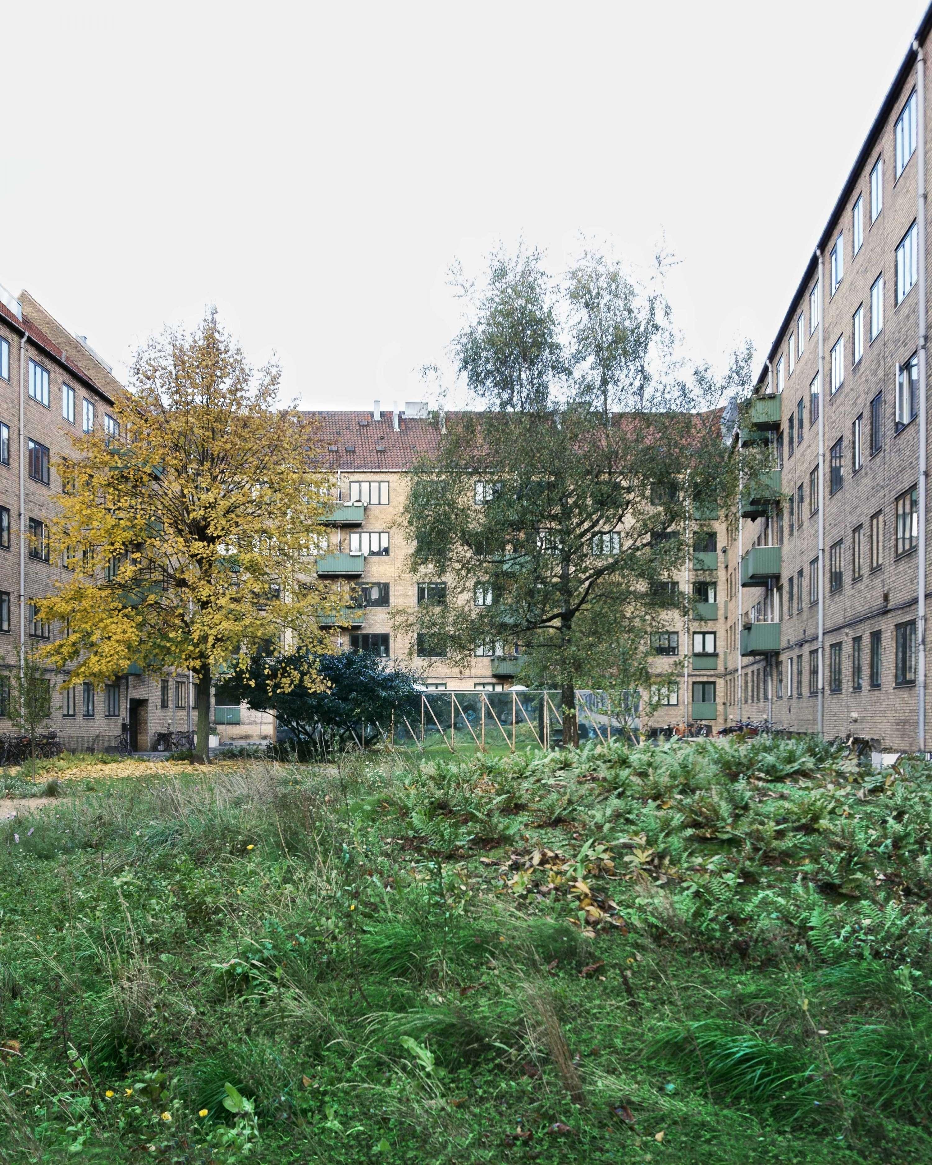 Nørrehus