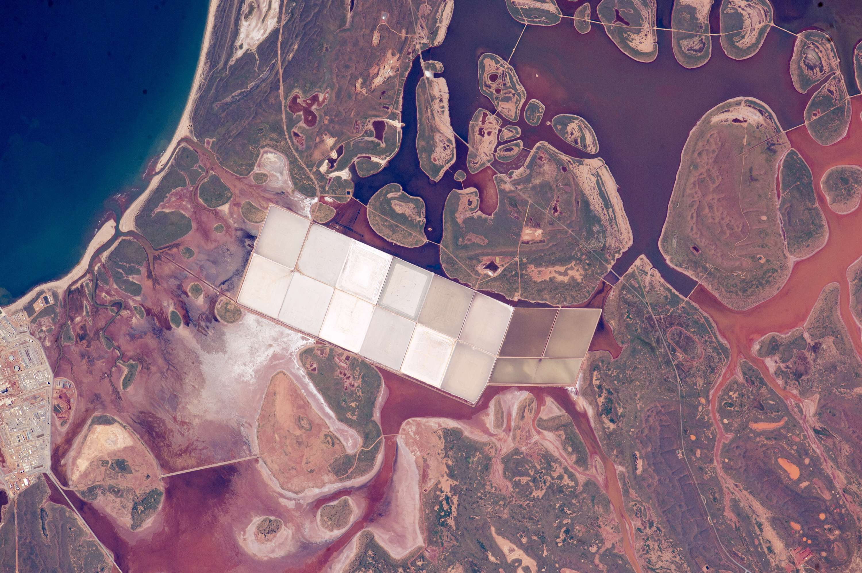 Salt Ponds and Coastal Flats
