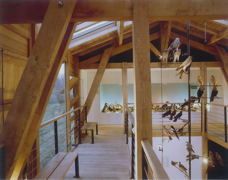 Musée Ornithologique