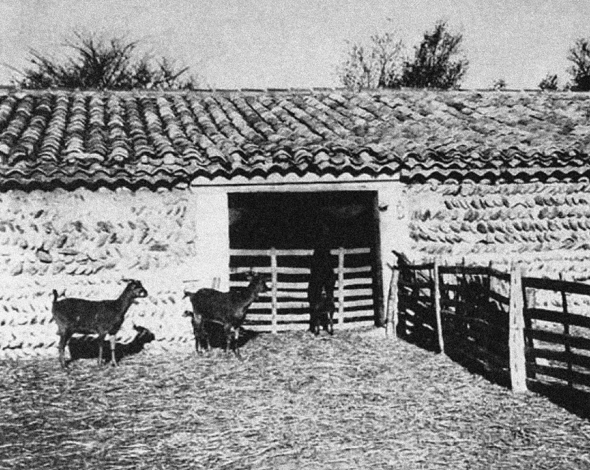 Exploitation Pastorale Crau