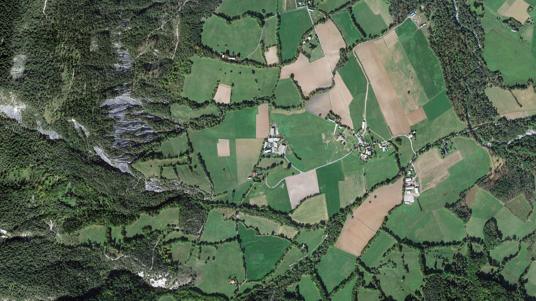 Exploitation Pastorale Provence Alpine